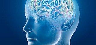 Brain Donation Image