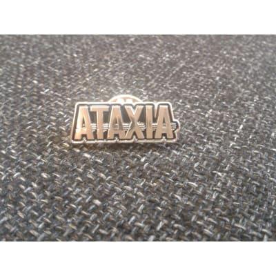 silver pin badge